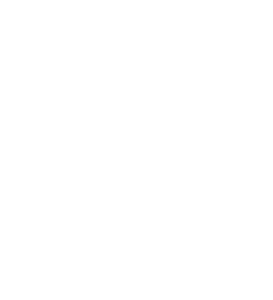 NPS Media LOGO HVIT Transparent